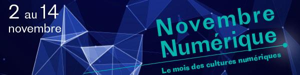 BANN-NOVNUM-newdims
